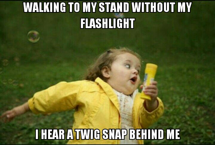 LED Flashlights